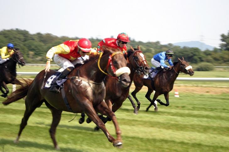 horse-racing-2714852_1280